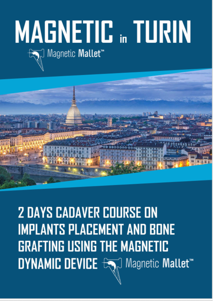 Turin – Magnetic Mallet